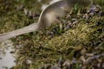 herbes_provence_lead1up
