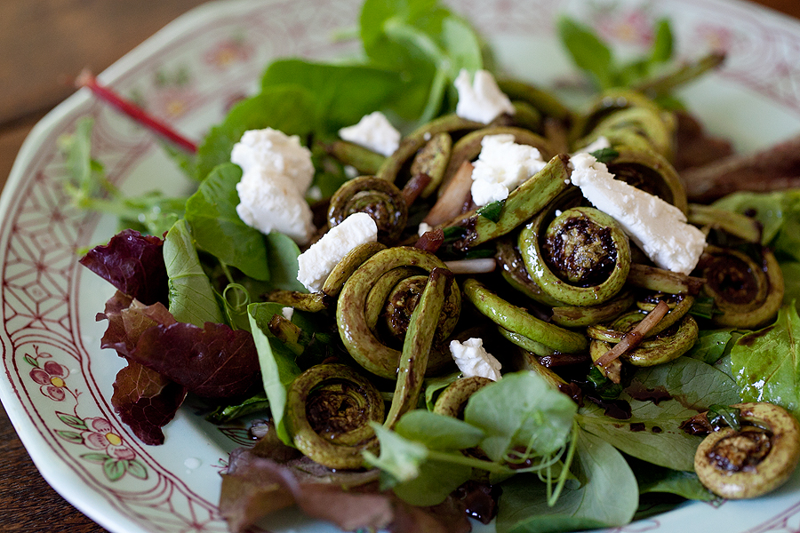 Fiddlehead Fern Salad :: Spiceman's F.M. 1410 :: Foraging