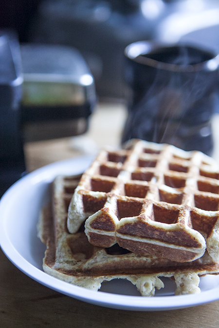 HOt Oat Waffles