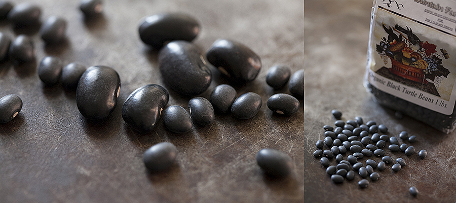 photo of different sizes of black beans