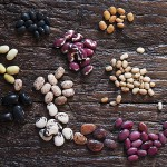photo of an assortment of heirloom beans