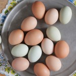 Fruth Farm Eggs